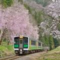 春やうやう