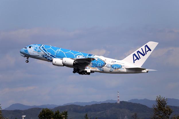 JA381A-6