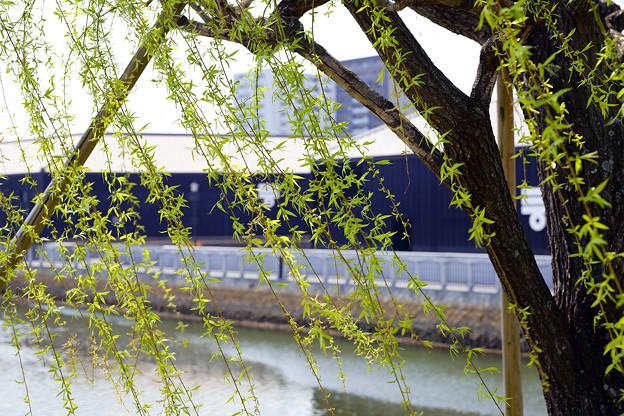 ミツカンミュージアムと運河