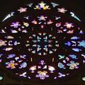 Photos: 聖ヴィート大聖堂