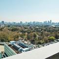 Photos: 新宿御苑俯瞰