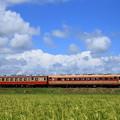Photos: 2021年7月25日 いすみ鉄道
