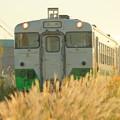 2021年10月10日 小湊鐵道