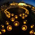 キャンドルナイト ― 2011年3月11日の記憶の為に 常磐公園(3)