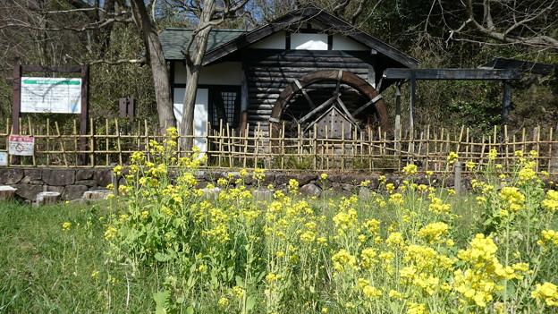 寺家ふるさと村の水車