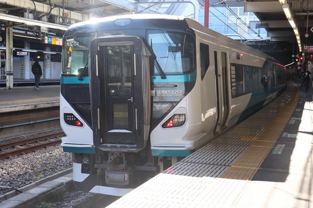 東海道線 E257系2000番台NA-04編成 踊り子 (1)