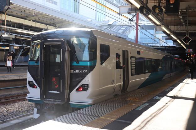 東海道線 E257系2000番台NA-04編成 踊り子 (2)