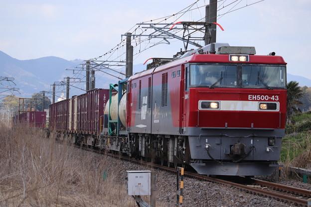 Photos: 常磐線 2095レ EH500-43牽引 2021.04.03