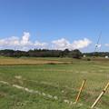 秋の田園風景 IMG_82782