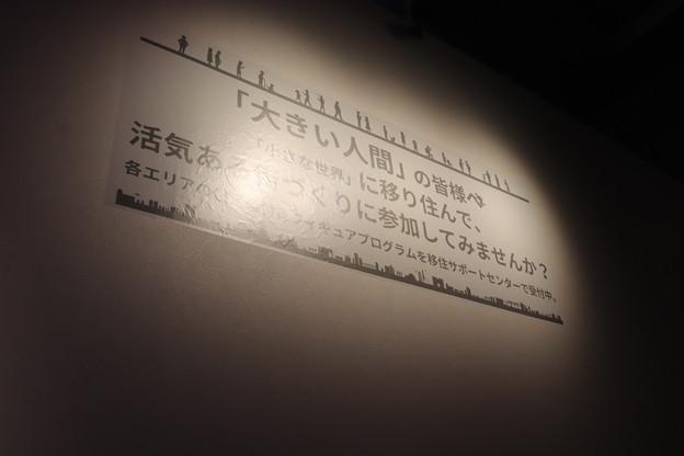 IMG_74065