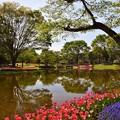 Photos: 昭和記念公園にて