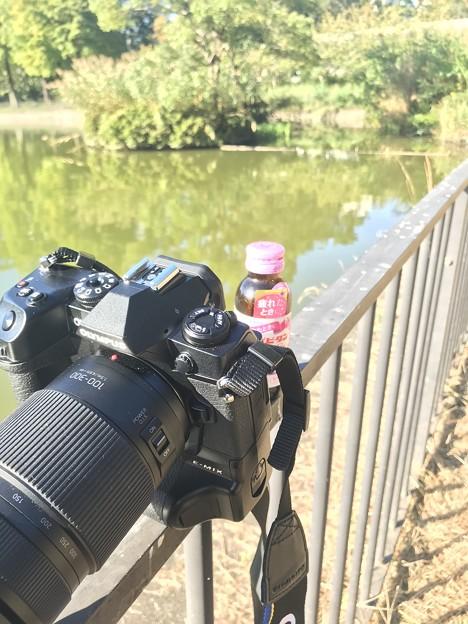 カメラ散歩~大阪/吹田千里