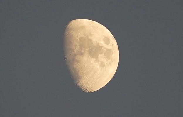 今日のお月さん  10月15日(金)午後5時すぎ