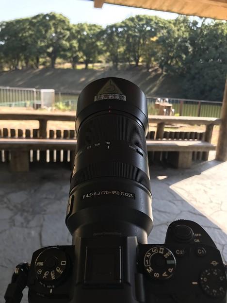カメラ散歩/公園散歩