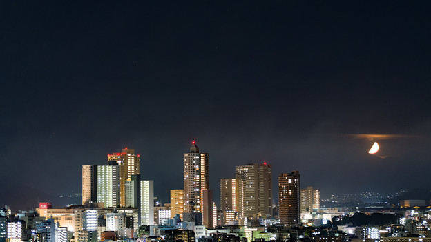 Photos: 半月の夜に・・・