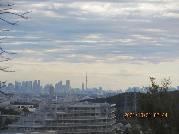東の方角には新宿高層とスカイツリーが