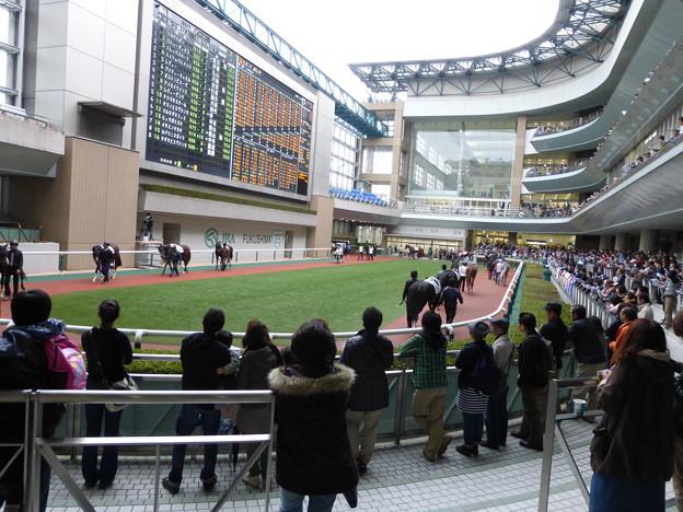 福島_P1000676
