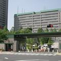 東京新宿CIMG0001_l2
