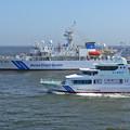東京湾p1100946_l