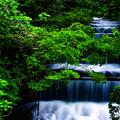 Photos: 涼景水流