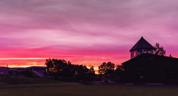 Photos: 夕焼けに染まるころ