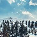 モエレ山 冬百景 > 5