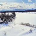 Photos: 鉄塔のある風景/春初の沼