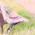 Photos: 夏の忘れ物...モノコン番外