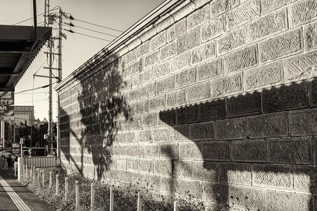 warm wall /本日の3枚