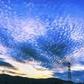 鉄塔のある風景/いわし雲 広がる