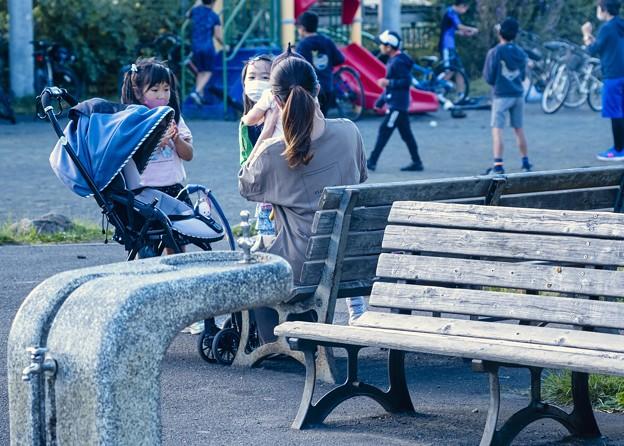 好奇心女子/本日の3枚