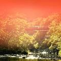Photos: 二見吊橋あたり