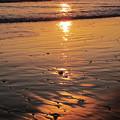 朝の渚jpg_