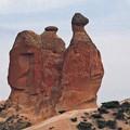 Photos: ラクダ岩