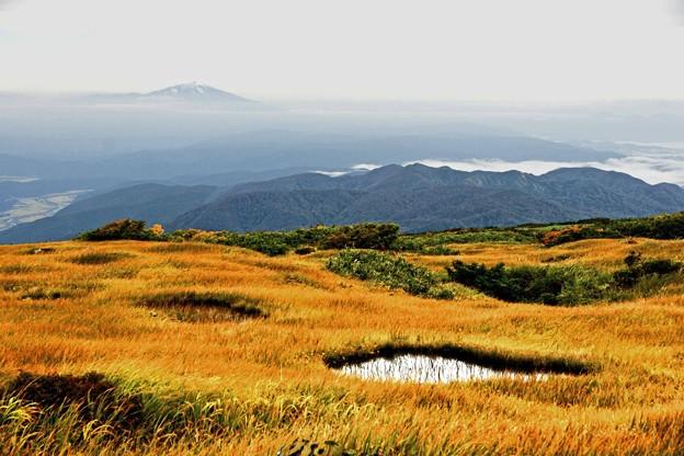 鳥海山を望む