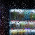 Photos: 雨の日