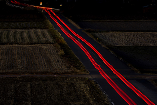 red Light Trail