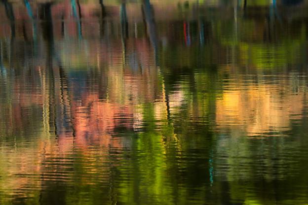 Photos: 湖面色彩
