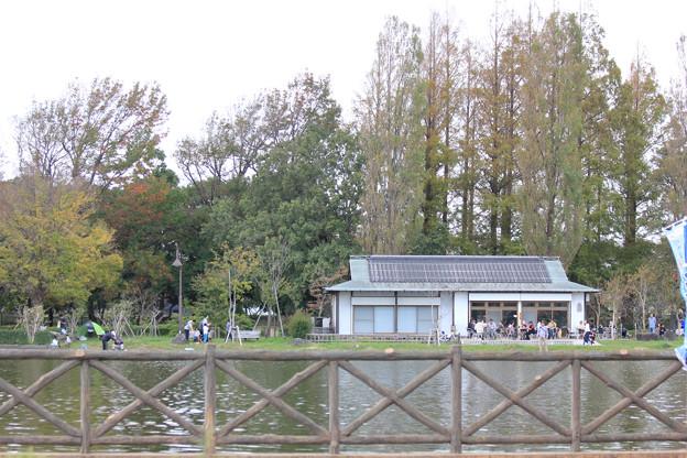 Photos: 「アルフィー 」バート・バカラック テナーサックスで 三郷公園 絵夢島/PIXTA