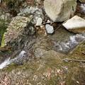 Photos: 二段滝 上の大滝に向かうロープ
