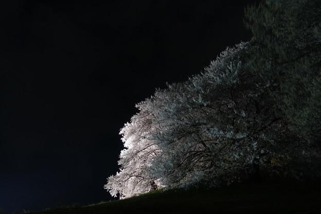 2021白石稲荷山古墳(5)