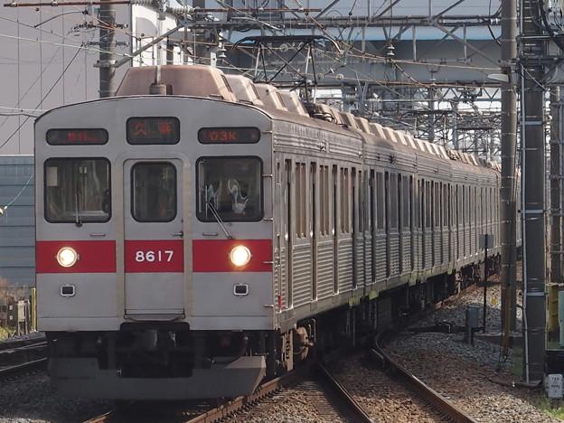 P3313469