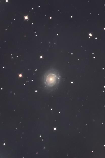 NGC3147に発見されたSN2021hpr