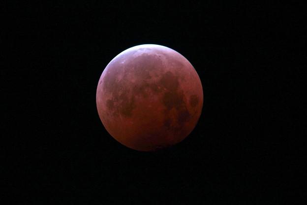 月齢14.2の皆既月食