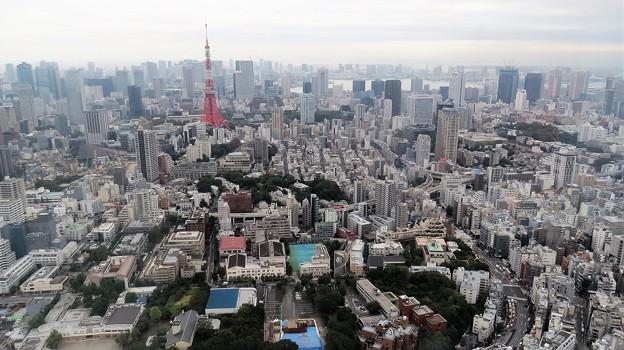 東京と言えば東京タワー(*^^)v