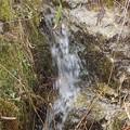 3月21日「水温む」