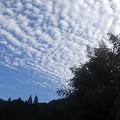 6月20日「空と雲」