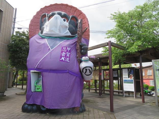 タヌキ忍者