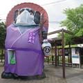 Photos: タヌキ忍者