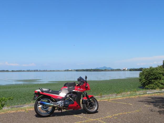 琵琶湖&近江富士